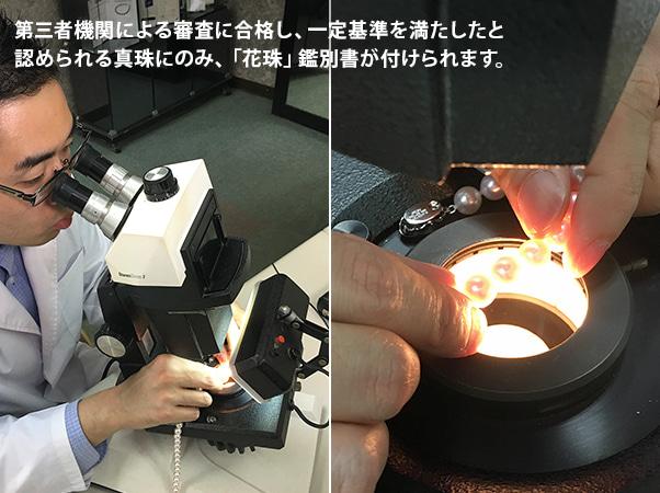 大丸松坂屋 8.5-9mm花珠アコヤ真珠セット6