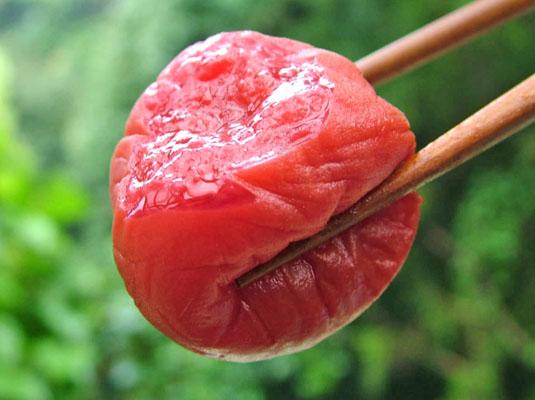 古道の梅屋 紀州南高梅しそ味1.8kg