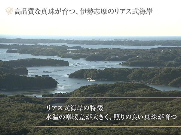 高島屋 アコヤ超大珠真珠グラデーションネックレスセット11