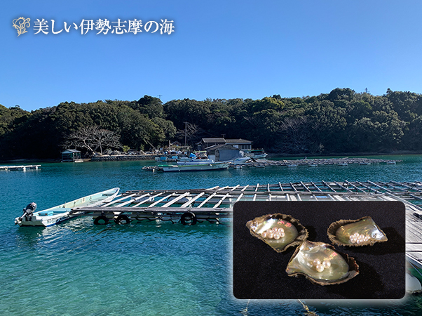 高島屋 アコヤ超大珠真珠グラデーションネックレスセット12