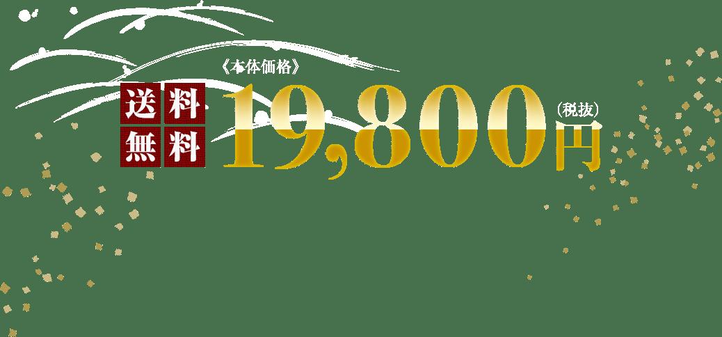 送料無料 本体価格 19,800円(税抜)